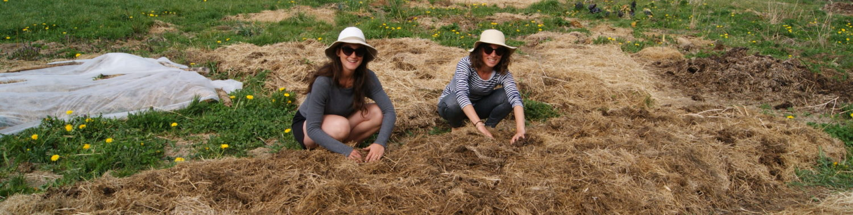 Agrolab, le labo agroécologique à ciel ouvert